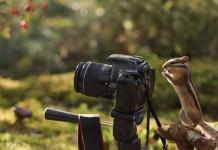"""Снимки логопеда из Нерюнгри поразили российских пользователей """"Canon"""""""