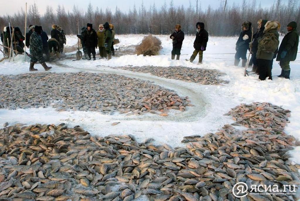Промышленное рыболовство на Ниджили обсудили председатель ГоскомАрктики и глава Кобяйского улуса