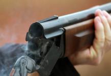 ОНФ предлагает обсудить ужесточение правил выдачи лицензий на оружие