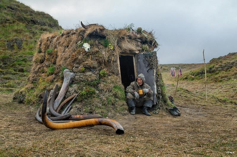 Легализация добычи бивней мамонта повысит доходы северян