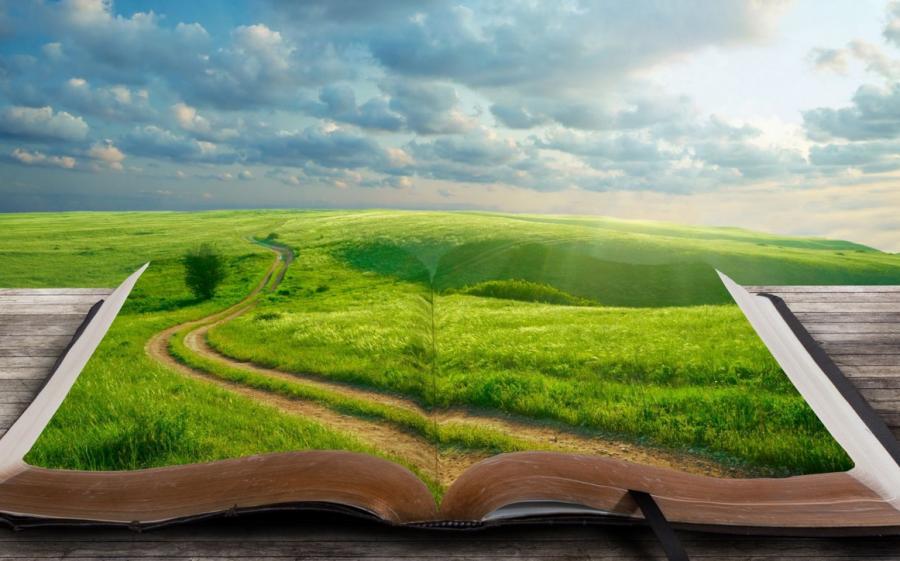 На Дальнем Востоке будут вручать литературную премию