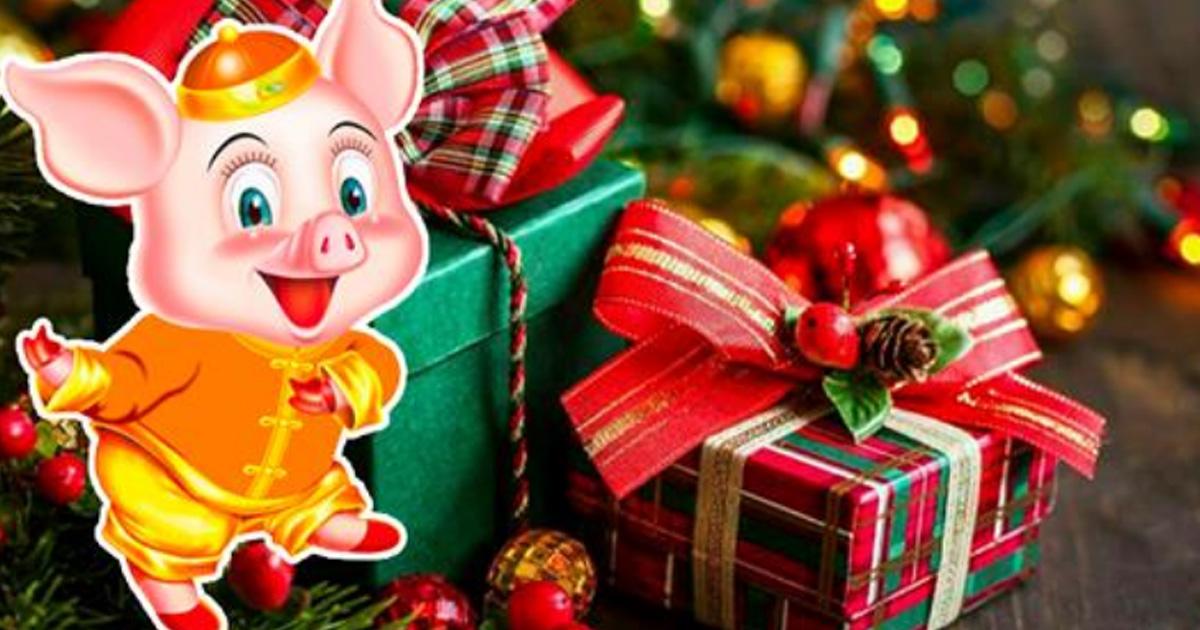 Год свиньи: Что можно, а что нельзя в новогоднюю ночь