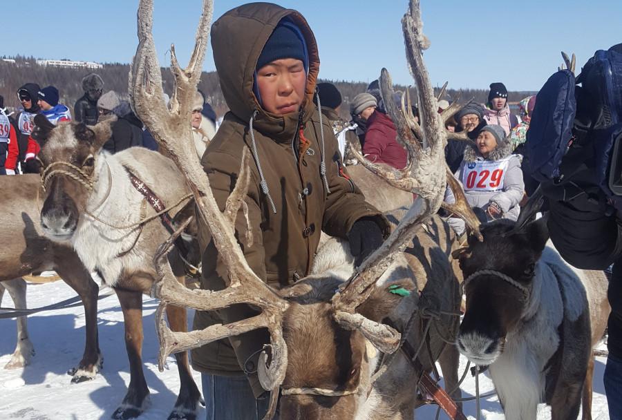 Айсен Николаев поручил правительству Якутии защитить арктические разделы госпрограмм