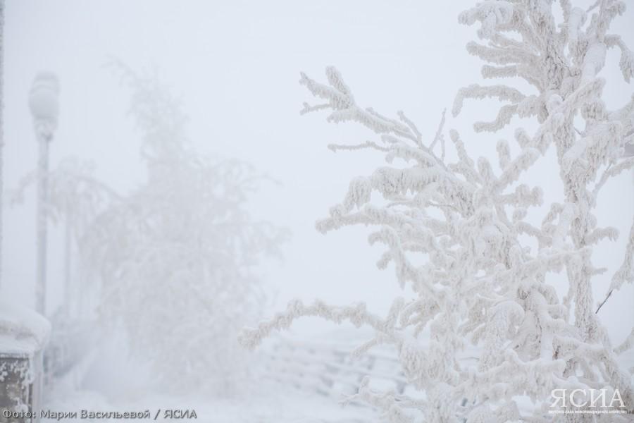 Синоптики прогнозируют метель в трех районах Якутии - Среднеколымском, Верхнеколымском и Усть-Янском