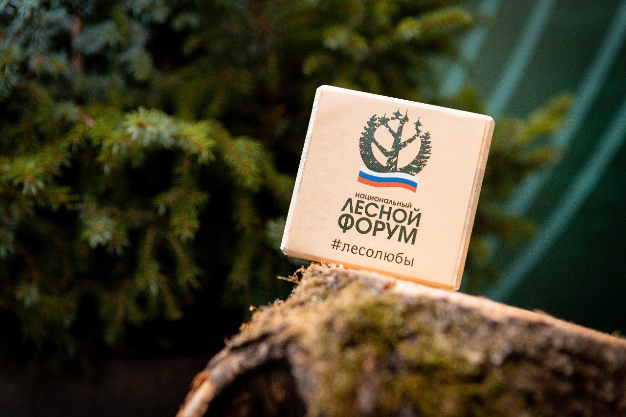 Национальный лесной форум состоится в июне в Якутске