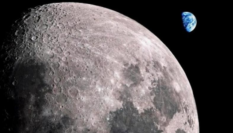 «Чанъэ-4» вырастил хлопок на Луне