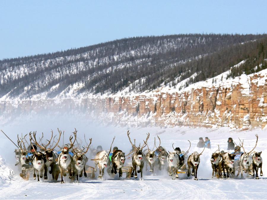 Елена Голомарёва предложила Госдуме изменить закон о коренных народах Севера