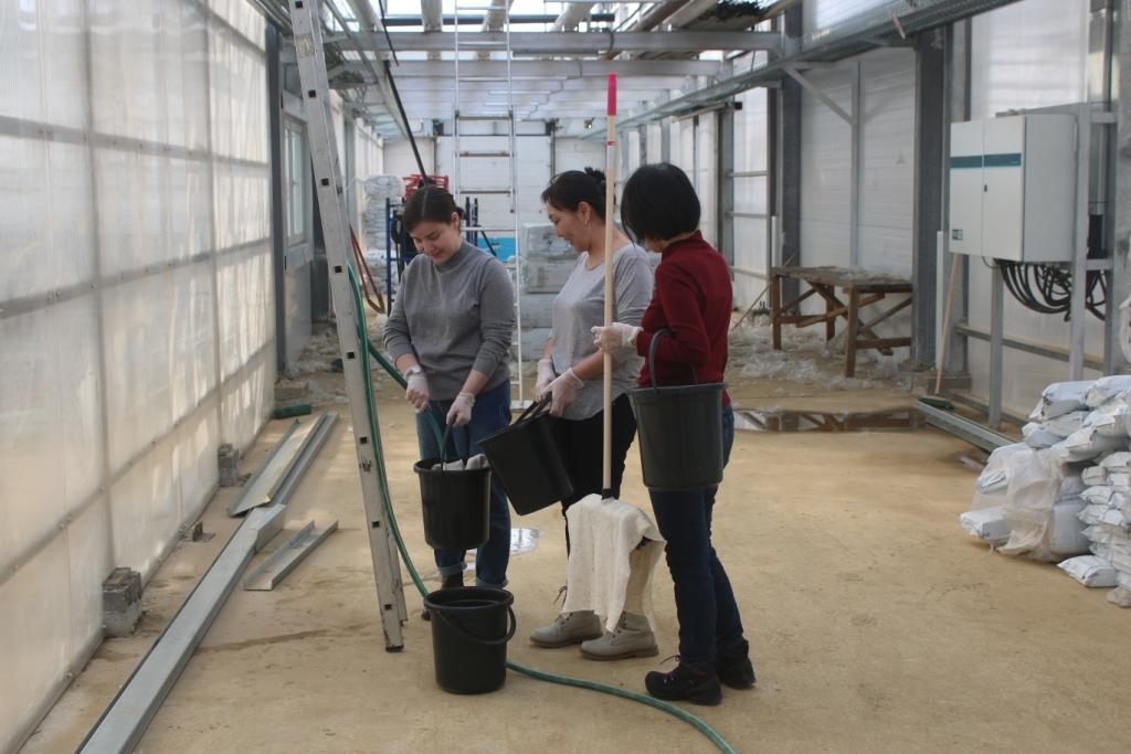 Сотрудники АЭБ провели субботник на территории тепличного комплекса «Саюри»