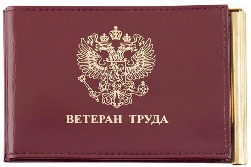 """В России предлагают упростить порядок получения """"Ветерана труда"""""""