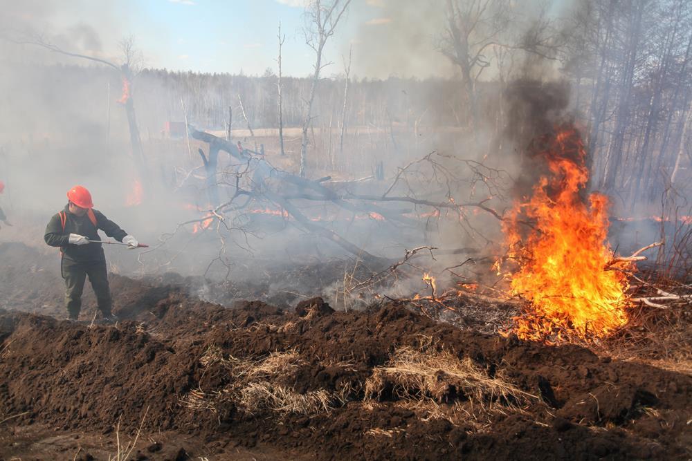 В Якутии зарегистрированы два лесных пожара