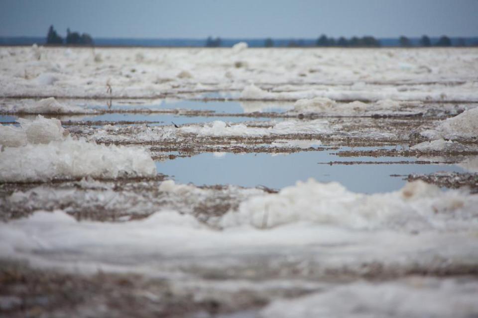 В Якутии наблюдать за ледоходом на реке Лене можно в режиме онлайн