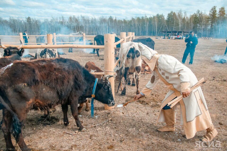 В Якутии объем валовой продукции в сельском хозяйстве показывает рост