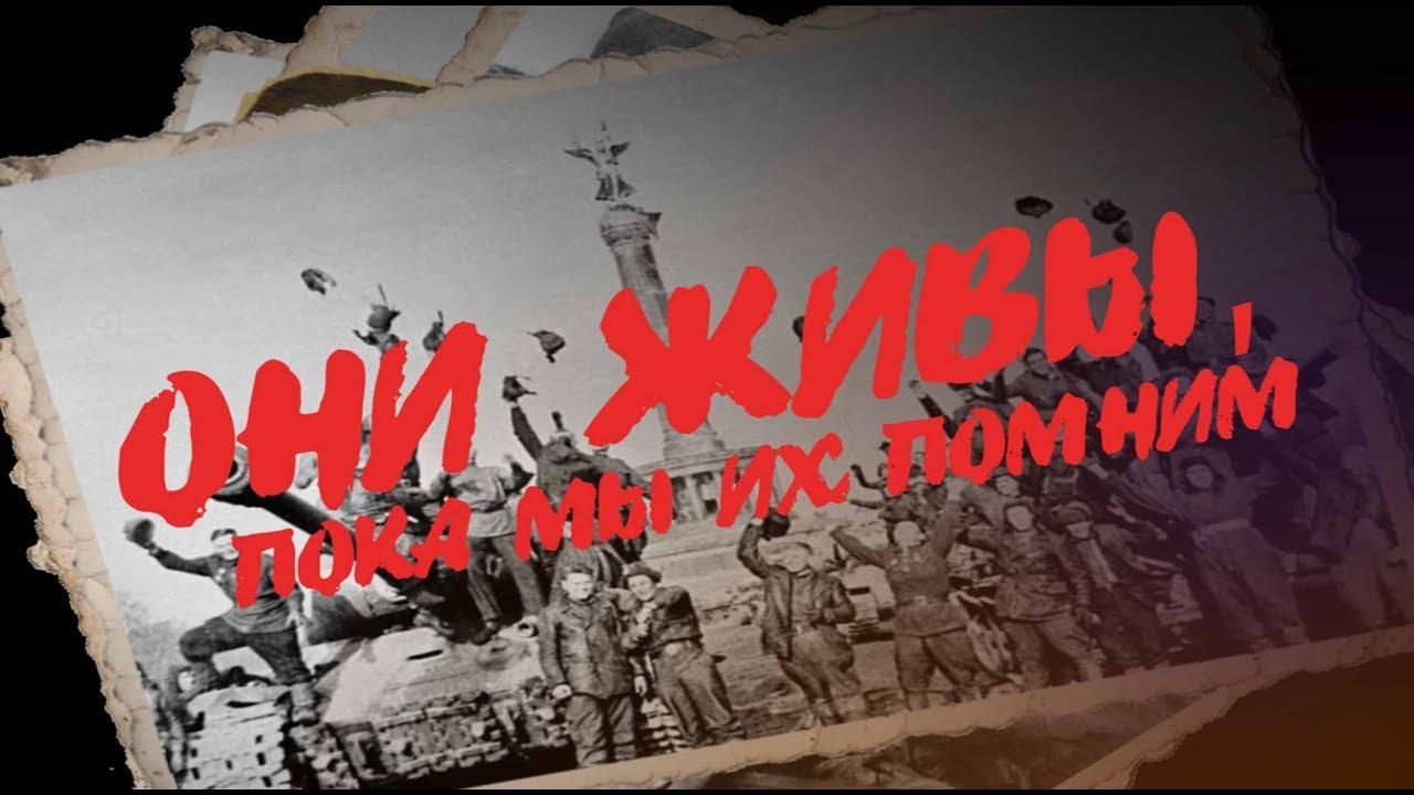 Они живы, пока мы их помним: воспоминания фронтовика Михаила Никитина