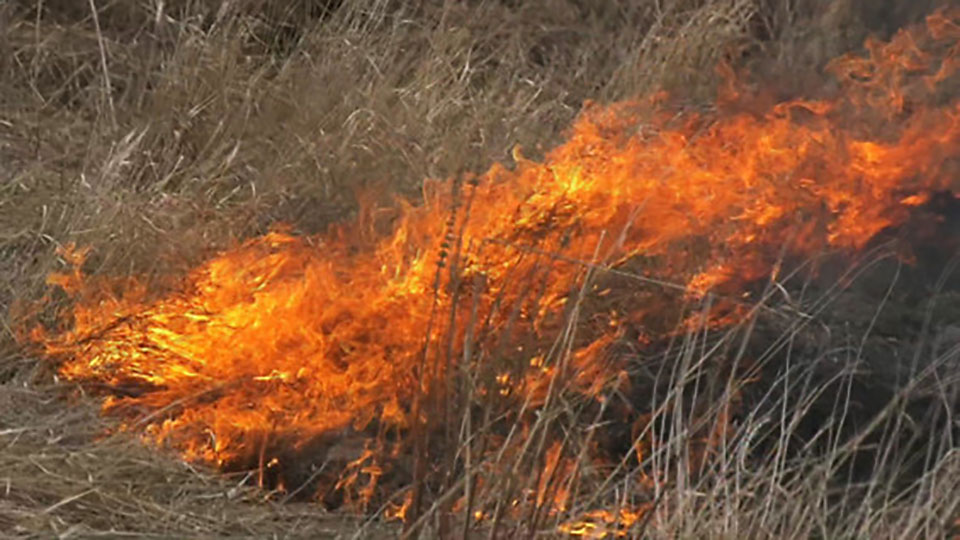Крупный пожар в Верхоянском улусе локализован