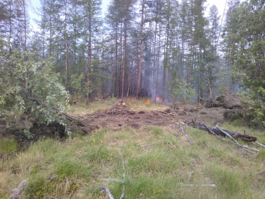 В республике локализовано четыре лесных пожара