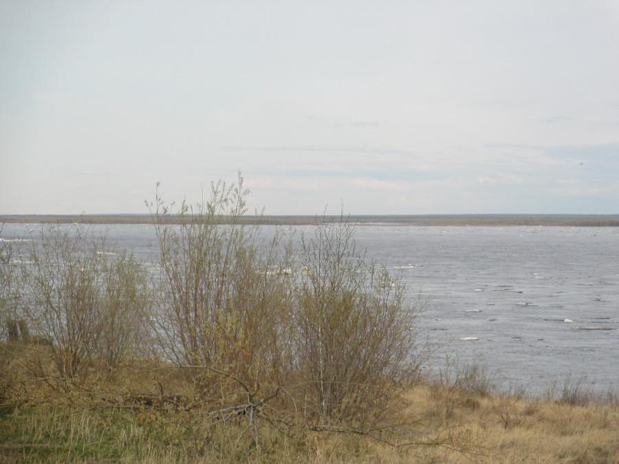 Паводковая обстановка: Лена и Колыма вышли в устье