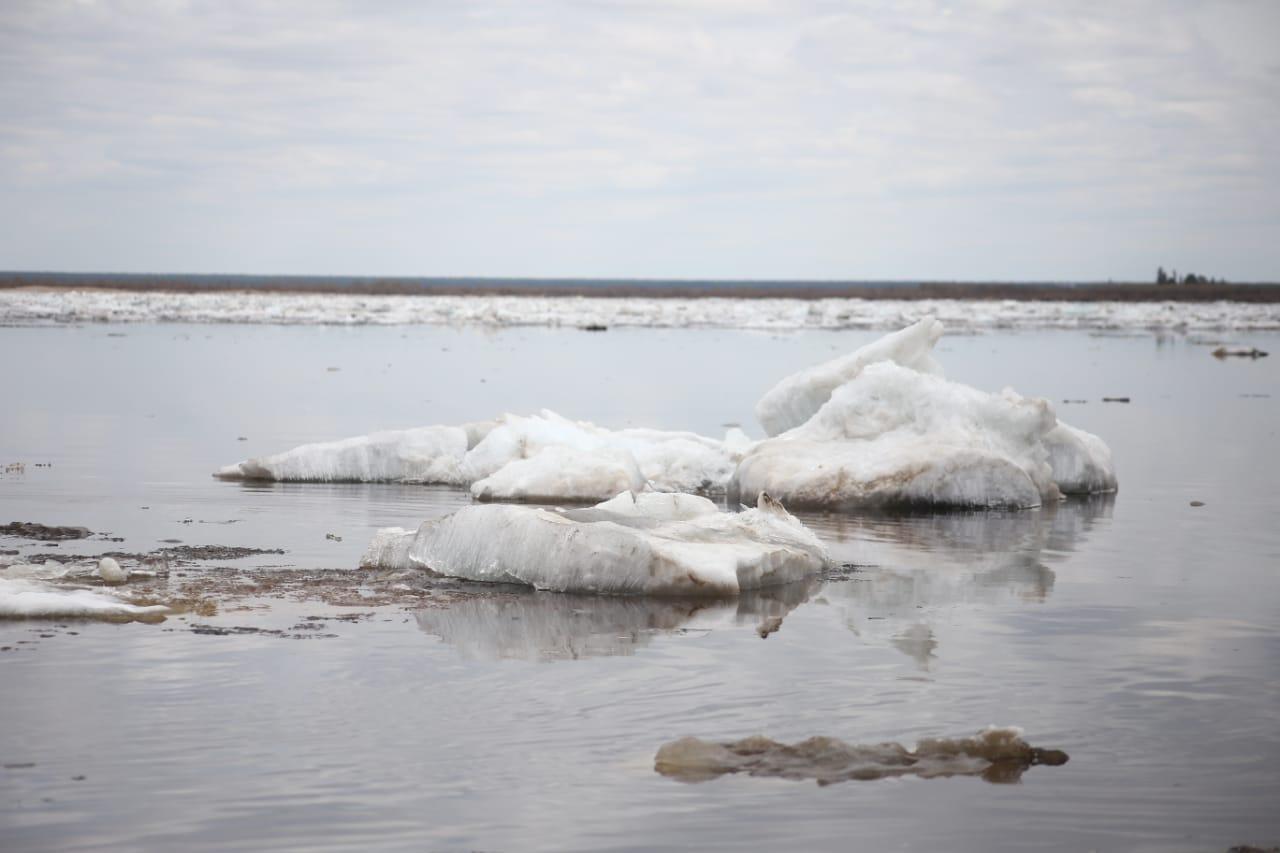 В Походске уровень воды превышает критическую отметку на 8 см