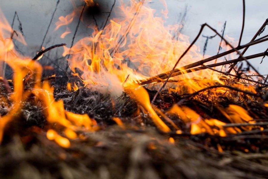 На территории Верхоянского района действуют четыре природных пожара