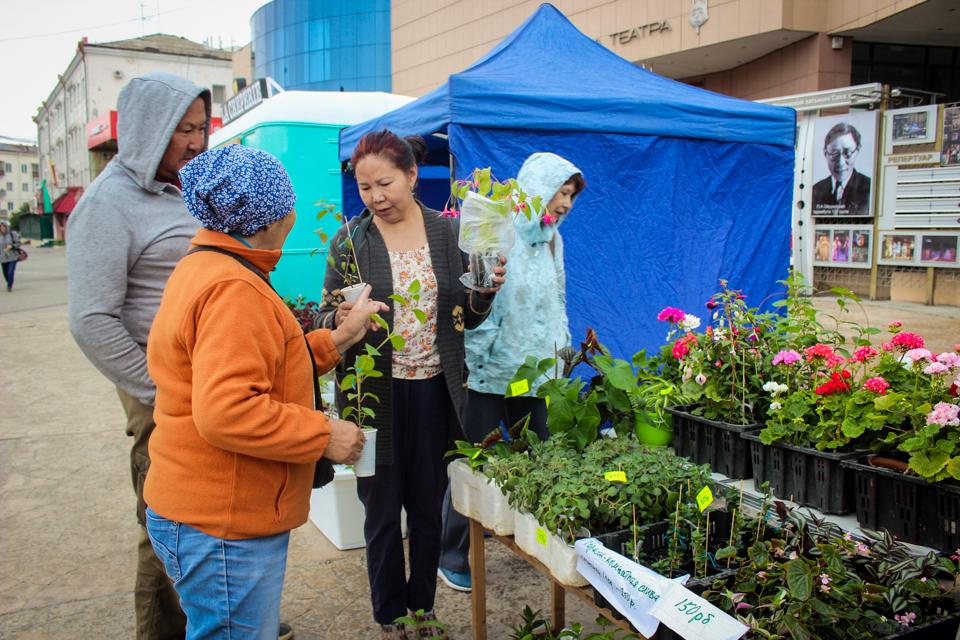 В Якутске проходит ярмарка садовых и комнатных растений