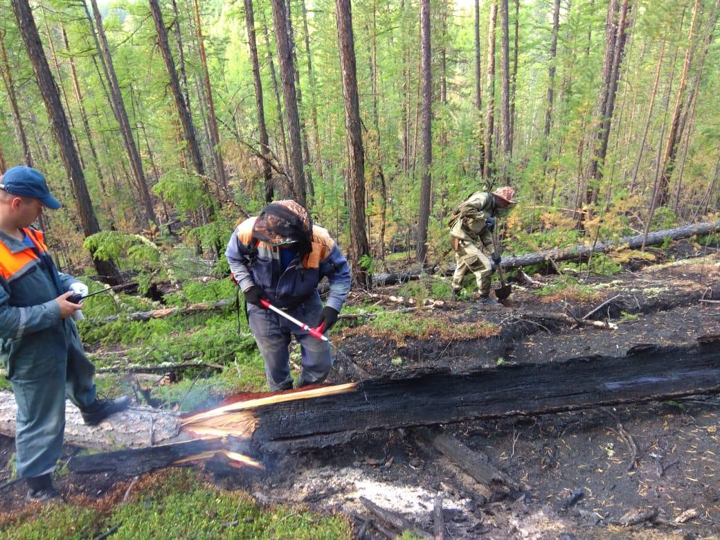 В Якутии за сутки ликвидировано 37 лесных пожаров