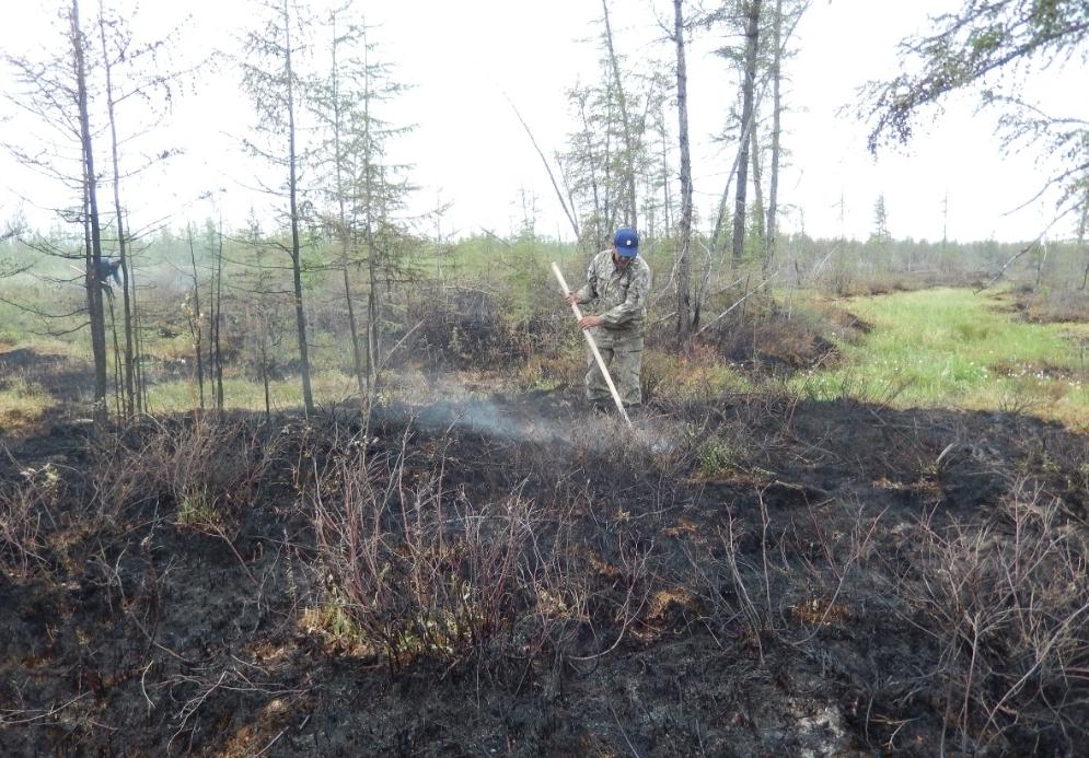 Якутия дополнительно получит более 120 миллионов рублей на тушение лесных пожаров
