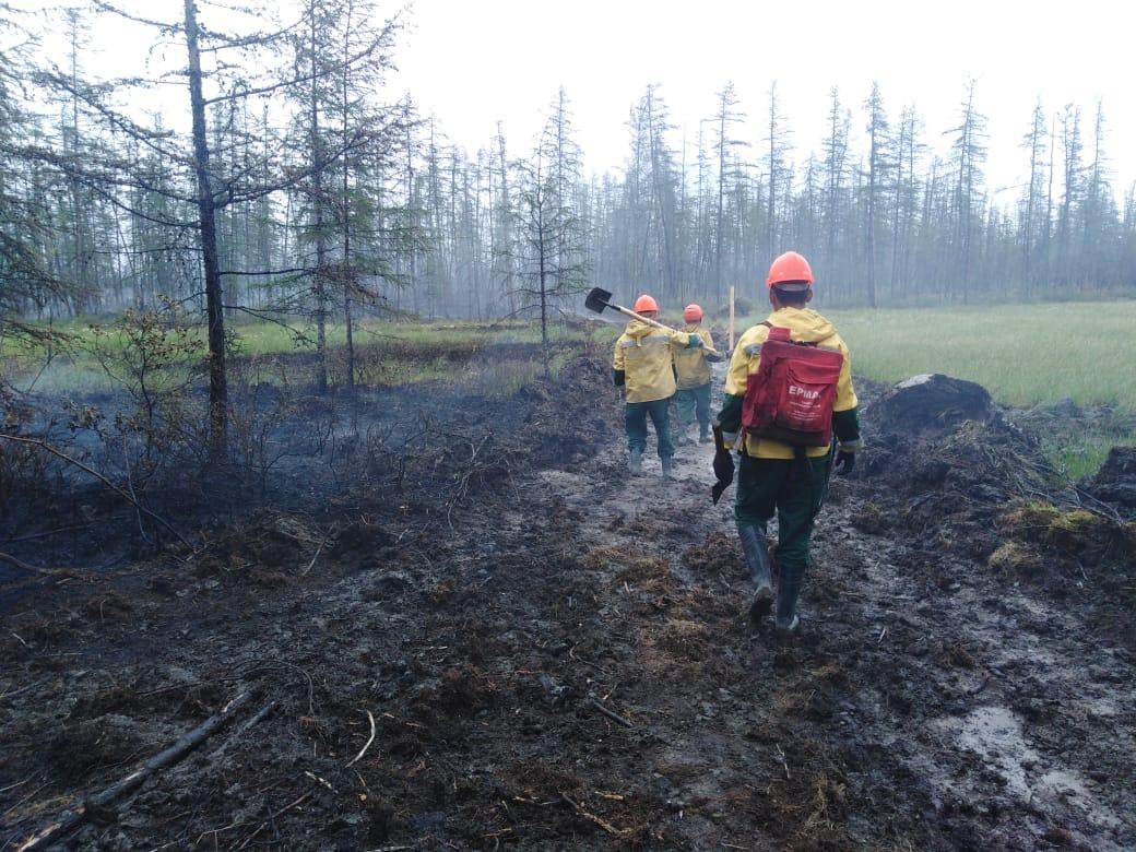 В Якутии за сутки ликвидировали пять лесных пожаров