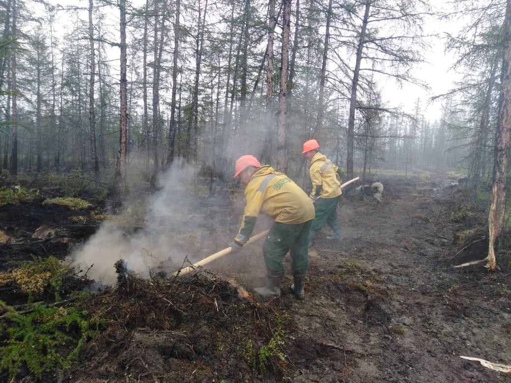 В Якутии за сутки ликвидировали 13 лесных пожаров