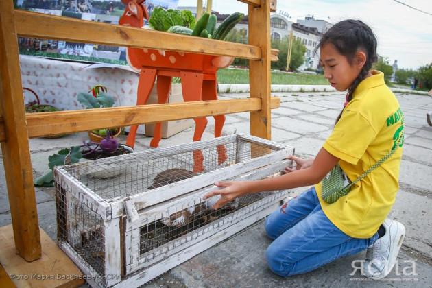 В Якутии разработают новые подходы к развитию агрошкол