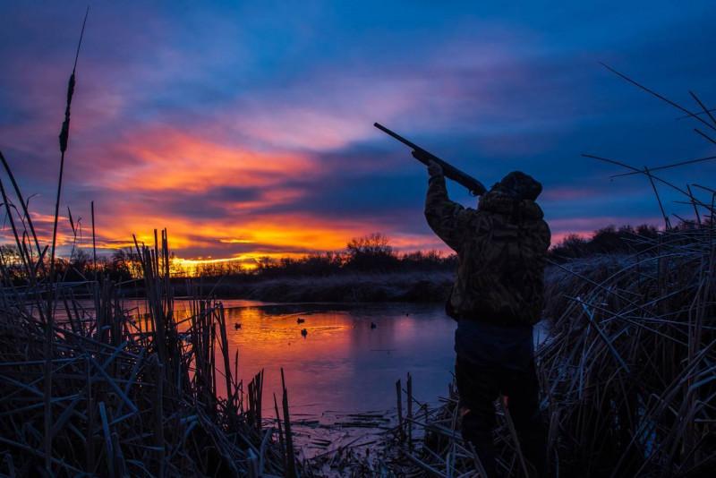 Названы имена победителей онлайн-викторины «День охотника»
