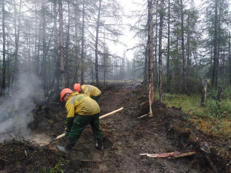 38 лесных пожаров ликвидировали в Якутии