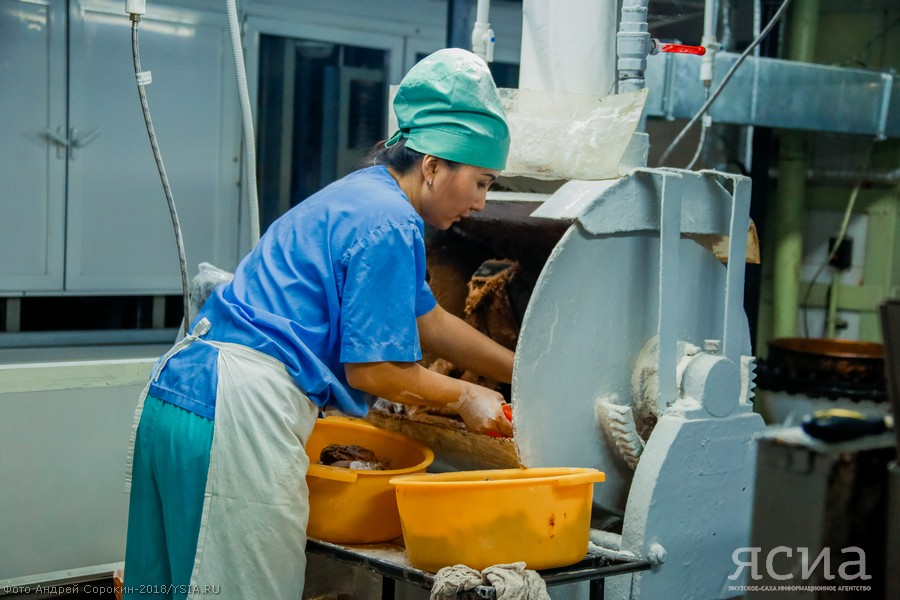 """В нацпроект """"Повышение производительности труда"""" планируют включить пять предприятий Якутии"""