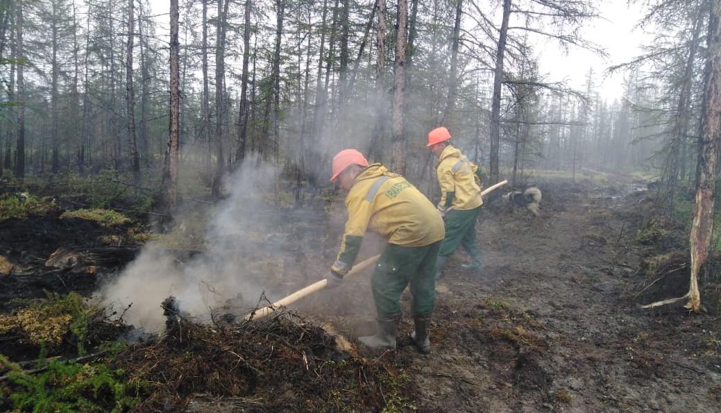 За сутки в Якутии ликвидировали 13 природных пожаров