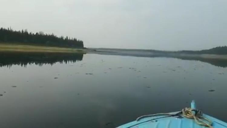 """""""Сгустки"""" на реке Вилюй. Результаты исследований Минэкологии станут известны через две недели"""