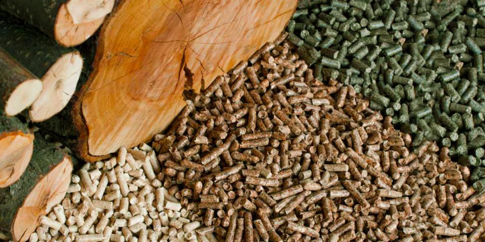 Японский инвестор планирует перерабатывать отходы деревообрабатывающих производств Якутии