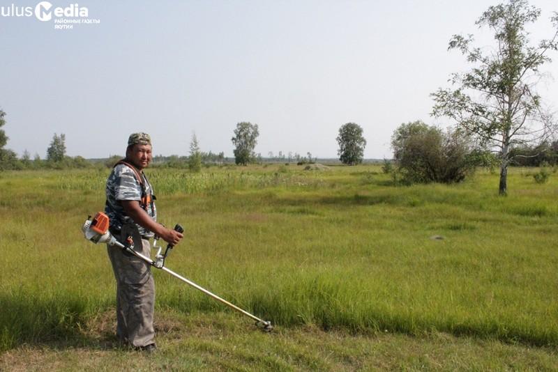Сенокос-2019: В Усть-Майском районе треть плана уже выполнили
