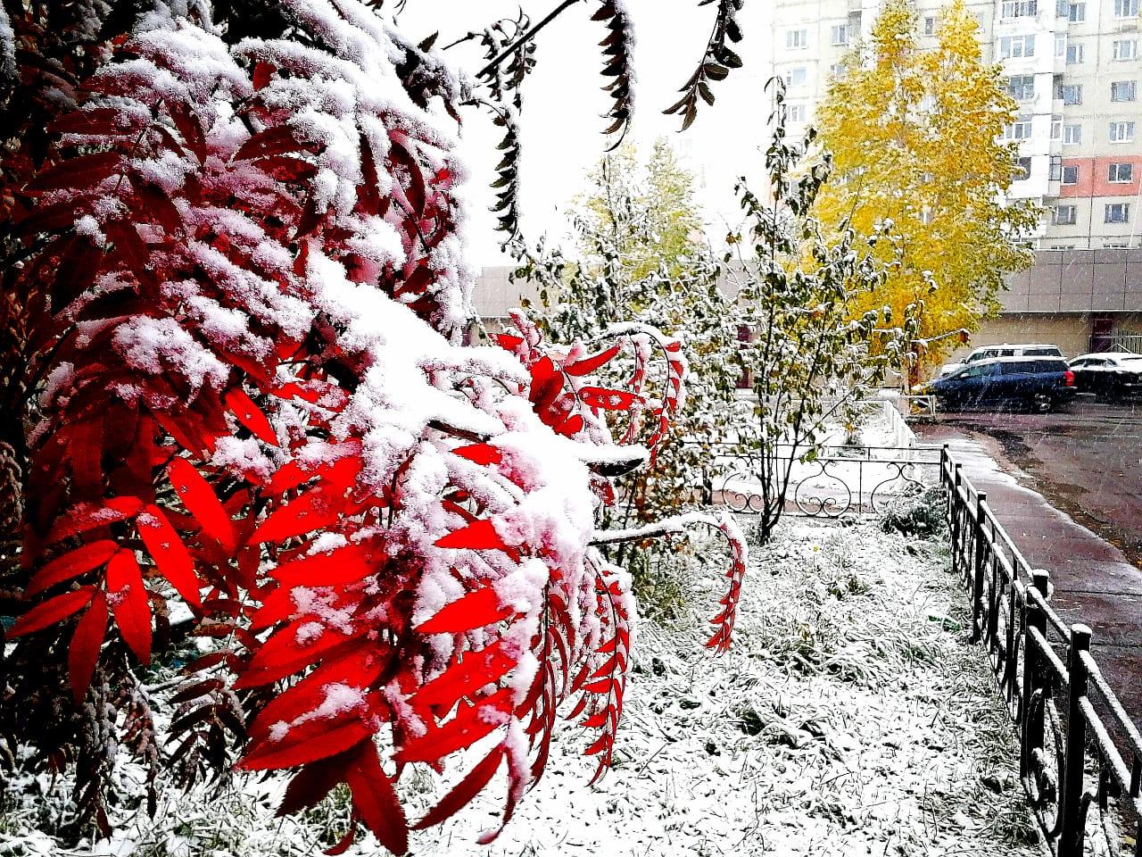 ФОТОФАКТ. Первый снег в Нерюнгри — ЯСИА