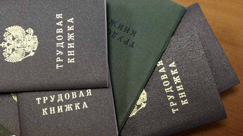 Комитет Госдумы поддержал законопроекты об электронных трудовых книжках