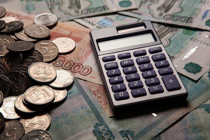 Самозанятые могут получить налоговые и кредитные льготы