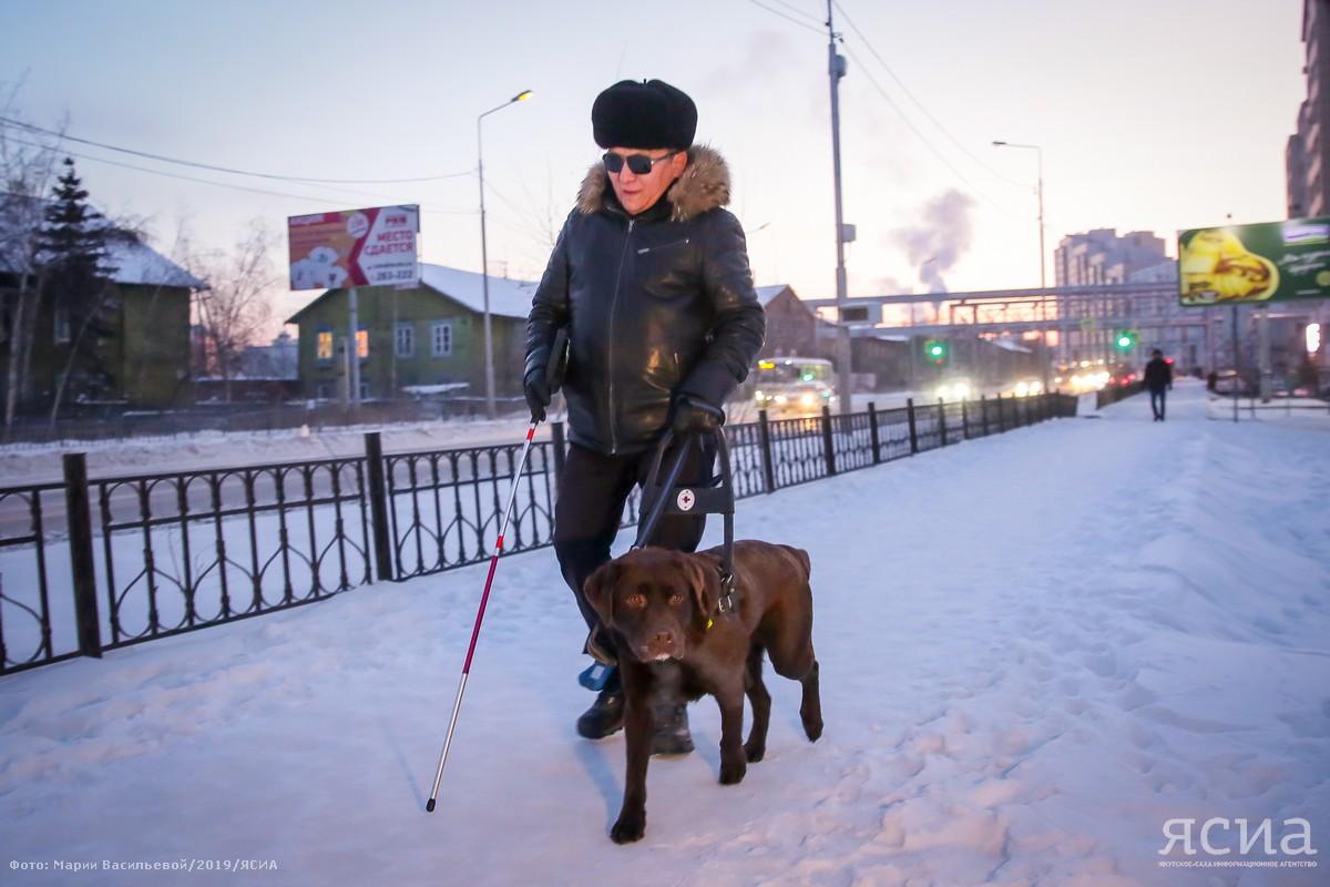Будь моими глазами. Как собака-поводырь помогает якутянину Михаилу Кондакову