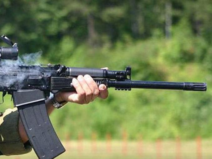 Сотрудникам Росприроднадзора будут выдавать огнестрельное оружие