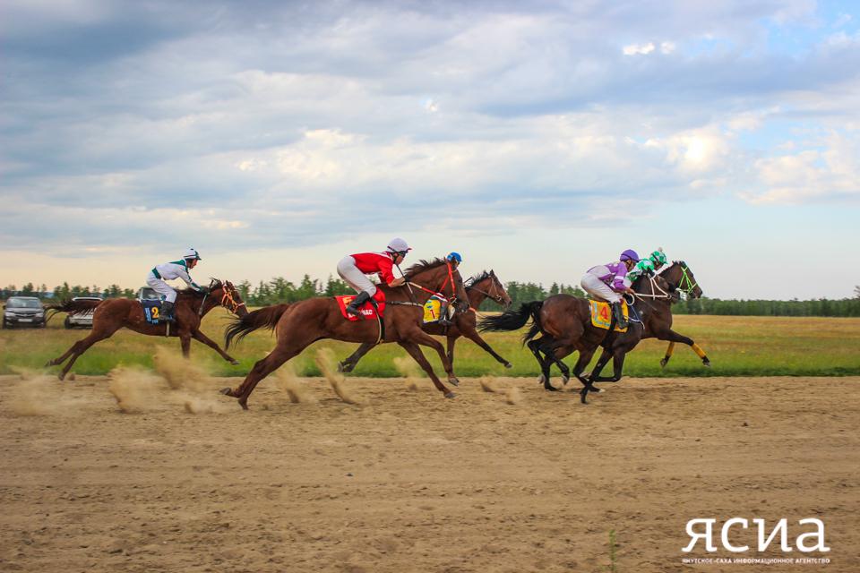 Общий призовой фонд конных скачек Ысыаха Олонхо в Олекме пока составляет один миллион рублей