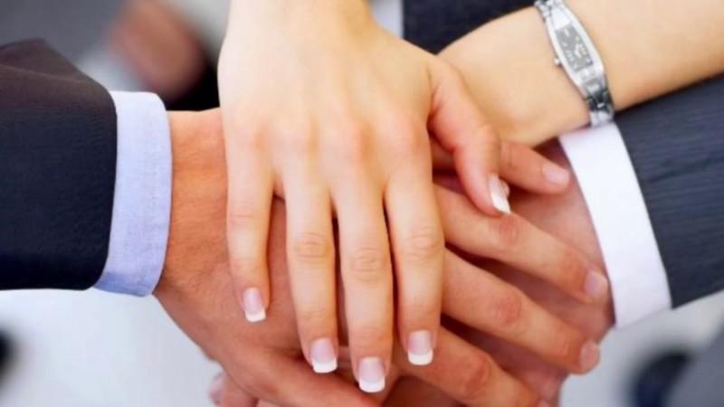 Кабмин приступил к разработке законопроекта о семейных предприятиях