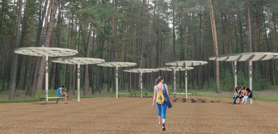 Оживить старый парк. В Томмоте надеются на победу в конкурсе проектов благоустройства малых городов
