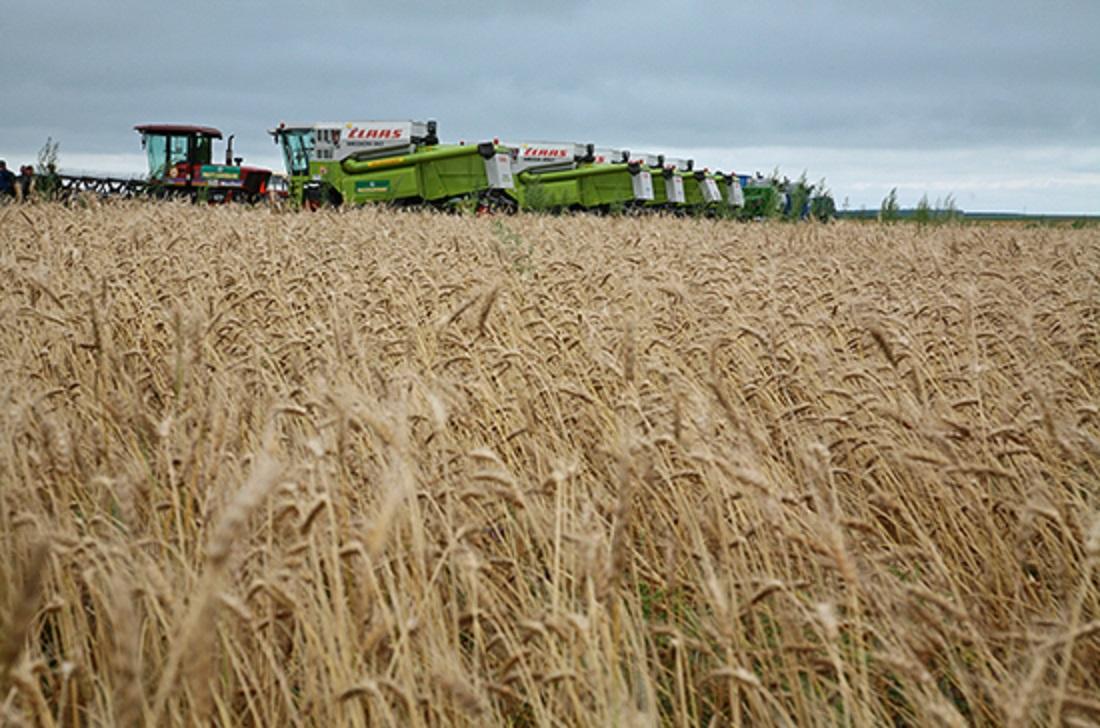 Сельхозпредприятиям предлагают упростить доступ к мерам господдержки