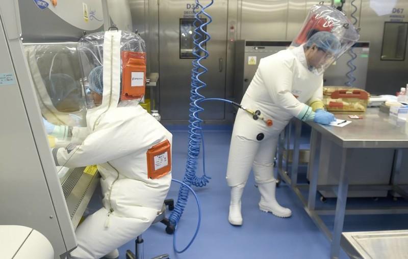 Мутации коронавируса могут сделать его более агрессивным