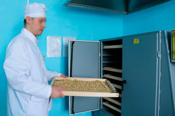 В исправительной колонии № 3 запустили новое оборудование по изготовлению макаронных изделий