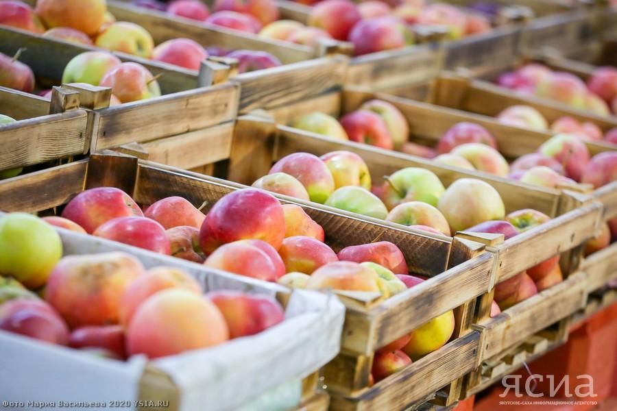 Повышение цен на продукты в Алдане проверит прокуратура