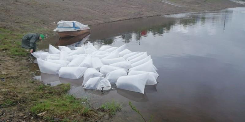 Зарыбление рек сиговыми видами рыб началось в Якутии