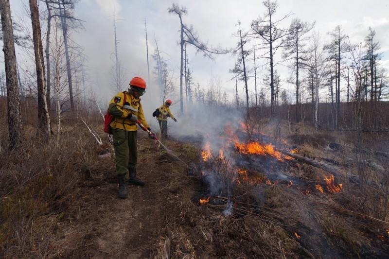 В Якутии тушат два лесных пожара