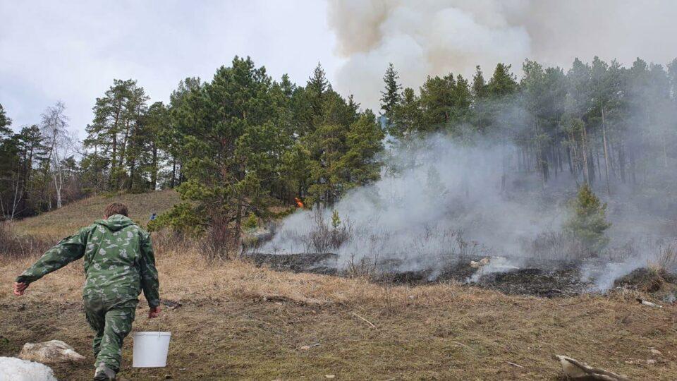 Минэкологии Якутии: За сутки ликвидировано 5 лесных пожаров, локализовано - 7
